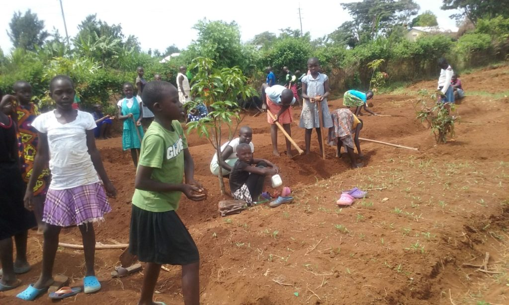 showdown-kenyaproject